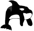 Orca ##STADE## - colore 16025